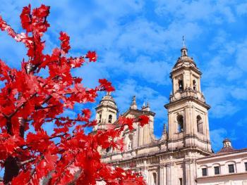 Bogota -Cartagena de Indias